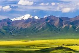 南亚季风中断时,青藏高原植被生长旺盛