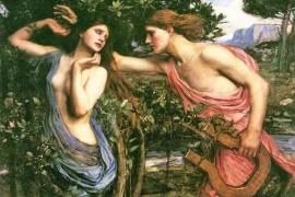 阿波罗和月桂树达佛涅的神话故事