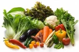 蔬菜的历史